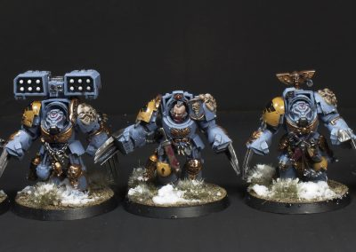 space-wolves-void-claws